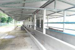 Foto de terreno comercial en venta en  , norte 2a secc, comalcalco, tabasco, 0 No. 01