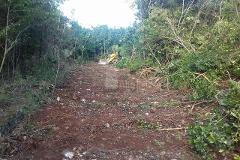 Foto de terreno comercial en venta en nuevo leon , colegios, benito juárez, quintana roo, 4324665 No. 01