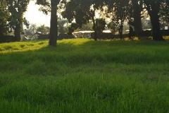 Foto de terreno comercial en venta en  , oacalco, yautepec, morelos, 0 No. 01