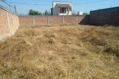 Foto de terreno habitacional en venta en - -, obrera popular, xochitepec, morelos, 0 No. 01