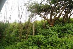Foto de terreno habitacional en venta en  , ocotepec, cuernavaca, morelos, 2100279 No. 01