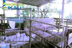 Foto de terreno habitacional en venta en ojite , ojite, tuxpan, veracruz de ignacio de la llave, 786433 No. 01