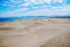 Foto de terreno habitacional en venta en  , paraíso del mar, la paz, baja california sur, 0 No. 01