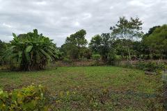 Foto de terreno habitacional en venta en parcela #173 z-3 p1/1 , paso colorado, medellín, veracruz de ignacio de la llave, 0 No. 02