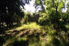 Foto de terreno habitacional en venta en  , parras de la fuente centro, parras, coahuila de zaragoza, 3257311 No. 02