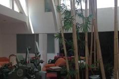 Foto de edificio en venta en  , pedregal 2, la magdalena contreras, distrito federal, 1303153 No. 01