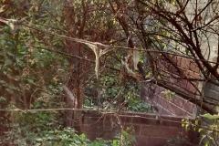 Foto de terreno habitacional en venta en  , pedregal de san nicolás 1a sección, tlalpan, distrito federal, 3076099 No. 01