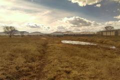Foto de terreno habitacional en venta en  , pemex, cuauhtémoc, chihuahua, 4328524 No. 01
