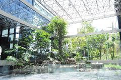 Foto de oficina en renta en  , jardines del pedregal, álvaro obregón, distrito federal, 3864684 No. 01