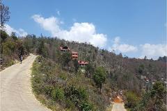 Foto de terreno comercial en venta en piedra cola de pato , del santuario, san cristóbal de las casas, chiapas, 0 No. 01