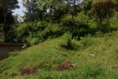 Foto de terreno habitacional en venta en pino s/n , reserva territorial, xalapa, veracruz de ignacio de la llave, 0 No. 01