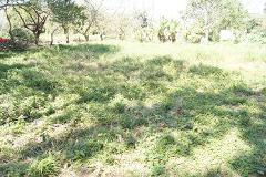 Foto de terreno comercial en venta en  , playa de vacas, medellín, veracruz de ignacio de la llave, 4408327 No. 01