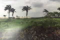 Foto de terreno comercial en venta en  , pocitos y rivera, veracruz, veracruz de ignacio de la llave, 3582028 No. 01