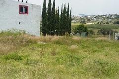 Foto de terreno habitacional en venta en predio achichipico , san francisco totimehuacan, puebla, puebla, 3625034 No. 01