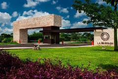 Foto de terreno habitacional en venta en  , progreso de castro centro, progreso, yucatán, 3472699 No. 01