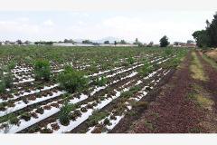 Foto de terreno habitacional en venta en prolongación guerrero poniente , los espinos, zamora, michoacán de ocampo, 3840589 No. 10