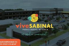 Foto de local en renta en  , pueblo nuevo 1, apodaca, nuevo león, 0 No. 01