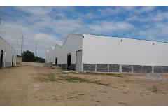 Foto de nave industrial en renta en  , puerto escondido, altamira, tamaulipas, 1550656 No. 02