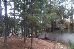 Foto de terreno habitacional en venta en rancheria huitepec, lado poniente de la ciudad s/n , los alcanfores, san cristóbal de las casas, chiapas, 4546167 No. 01