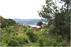 Foto de terreno habitacional en venta en rancheria huitepec. seccion ocotal 1 , san felipe ecatepec, san cristóbal de las casas, chiapas, 3802546 No. 01