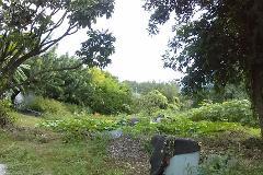 Foto de terreno habitacional en venta en  , rancho cortes, cuernavaca, morelos, 2625962 No. 01