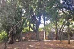 Foto de terreno habitacional en venta en . , rancho cortes, cuernavaca, morelos, 4621859 No. 01