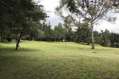 Foto de terreno industrial en venta en  , rancho san francisco pueblo san bartolo ameyalco, álvaro obregón, distrito federal, 0 No. 01
