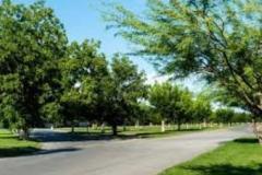 Foto de terreno comercial en venta en real del nogalar 00, real del nogalar, torreón, coahuila de zaragoza, 0 No. 01