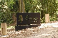 Foto de terreno habitacional en venta en  , reserva territorial, xalapa, veracruz de ignacio de la llave, 2323756 No. 01