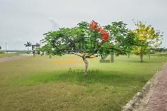 Foto de terreno habitacional en venta en  , residencial lagunas de miralta, altamira, tamaulipas, 4034464 No. 01