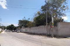 Foto de terreno habitacional en renta en rosario sabinal , plan de ayala, tuxtla gutiérrez, chiapas, 4653648 No. 01