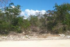 Foto de terreno habitacional en venta en  , sac-nicte, mérida, yucatán, 4411935 No. 01