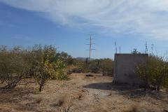 Foto de terreno habitacional en venta en  , san antonio el zacatal, la paz, baja california sur, 4393658 No. 02