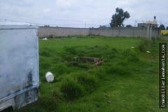 Foto de terreno habitacional en venta en  , san felipe tlalmimilolpan, toluca, méxico, 0 No. 01