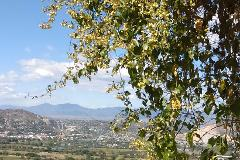 Foto de terreno habitacional en venta en  , san gaspar, jiutepec, morelos, 1612582 No. 01