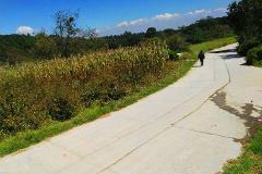 Foto de terreno comercial en venta en  , san jeronimo zacapexco, villa del carbón, méxico, 3267139 No. 01