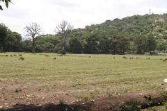 Foto de terreno comercial en venta en san juan 74, san juan, yautepec, morelos, 3556975 No. 01