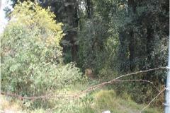 Foto de terreno habitacional en venta en  , san lorenzo acopilco, cuajimalpa de morelos, distrito federal, 2980025 No. 01