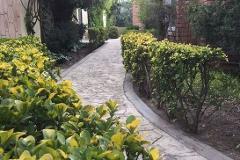 Foto de casa en venta en  , san lorenzo, saltillo, coahuila de zaragoza, 2934173 No. 03