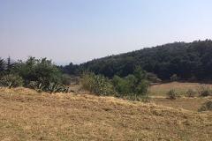 Foto de terreno comercial en venta en  , san mateo xalpa, xochimilco, distrito federal, 3318402 No. 01