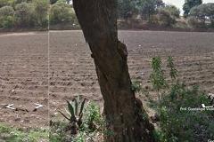 Foto de terreno habitacional en venta en  , san miguel ajusco, tlalpan, distrito federal, 3427324 No. 01