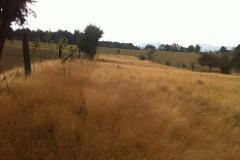 Foto de rancho en venta en  , san miguel topilejo, tlalpan, distrito federal, 4337041 No. 01