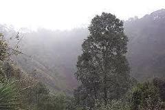 Foto de terreno habitacional en venta en  , san miguel totoltepec, toluca, méxico, 4378243 No. 01