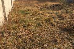 Foto de terreno habitacional en venta en  , san pablo xochimehuacan, puebla, puebla, 3393022 No. 01