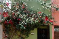 Foto de casa en venta en san rafael sur , san antonio, san miguel de allende, guanajuato, 4631350 No. 01