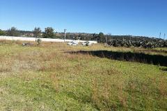 Foto de terreno habitacional en venta en  , santa cruz tlaxcala, santa cruz tlaxcala, tlaxcala, 4233634 No. 01