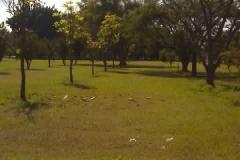 Foto de terreno habitacional en venta en santa ines 0, oacalco, yautepec, morelos, 2420312 No. 01