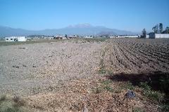 Foto de terreno habitacional en venta en  , santa maría, san andrés cholula, puebla, 0 No. 01