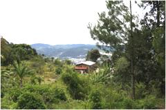 Foto de terreno habitacional en venta en sección ocotal , san felipe ecatepec, san cristóbal de las casas, chiapas, 3801821 No. 01