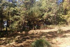 Foto de terreno habitacional en venta en senda tranquila , real monte casino, huitzilac, morelos, 4578294 No. 01